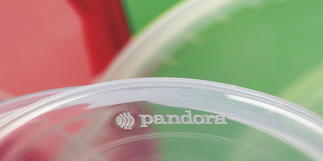 Pandora Plastik Faaliyetlerine Devam Ediyor…